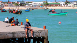 Fishing at the harbour